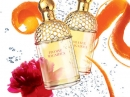 Aqua Allegoria Orange Magnifica Guerlain for women Pictures
