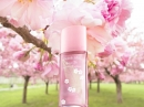 Green Tea Cherry Blossom Elizabeth Arden for women Pictures