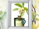 White Tea Flowers Monotheme Fine Fragrances Venezia unisex Imagini