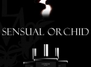 Sensual Orchid LM Parfums for women Pictures