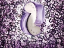 Omnia Amethyste Bvlgari pour femme Images