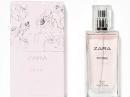 Zara Rose Zara Feminino Imagens