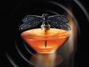 Libellule Crystal Edition 2013 Lalique de dama Imagini