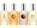 Moringa The Body Shop unisex Imagini