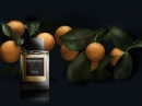Sicilian Mandarin Ermenegildo Zegna für Männer Bilder