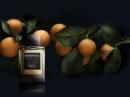 Sicilian Mandarin Ermenegildo Zegna de barbati Imagini