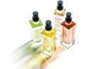 Magnolia & Mure L`Occitane en Provence for women Pictures