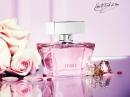 Rosa Tous für Frauen Bilder
