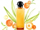 Eau de Mandarine Ambrée Hermes for women and men Pictures
