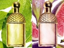 Aqua Allegoria Figue - Iris Guerlain for women Pictures