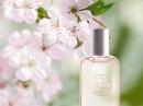 Cerisier en Fleurs Yves Rocher για γυναίκες Εικόνες