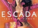 Tropical Punch Escada de dama Imagini