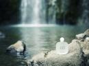 Acqua di Gioia Eau de Toilette Giorgio Armani pour femme Images