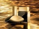 Liquid Gold Euphoria Men Calvin Klein de barbati Imagini