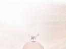 Repetto Eau de Parfum Repetto pour femme Images
