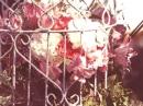 Eaux de Rose Code Deco для женщин Картинки