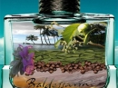 Del Mar Caribbean Baldessarini für Männer Bilder
