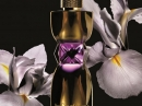 Manifesto Le Parfum Yves Saint Laurent for women Pictures