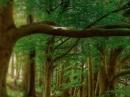 Precious Forest Keiko Mecheri für Frauen und Männer Bilder