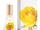 Zolotaya Roza Dilis Parfum für Frauen Bilder