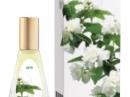 Zhasmin Dilis Parfum für Frauen Bilder