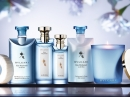 Eau Parfumee au The Bleu Bvlgari for women and men Pictures
