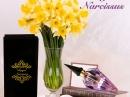 Royal Narcissus Arabesque Perfumes для женщин Картинки