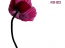 Flower by Kenzo Kenzo for women Pictures