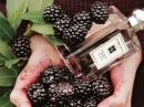 Blackberry & Bay Jo Malone pour femme Images
