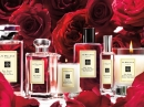 Red Roses Jo Malone for women Pictures