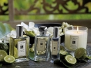 Sweet Lime & Cedar Jo Malone London unisex Imagini