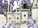 Wild Bluebell Jo Malone pour femme Images