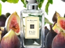 Wild Fig & Cassis Jo Malone London for women and men Pictures