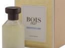 Classic 1920 Bois 1920 dla kobiet i mężczyzn Zdjęcia