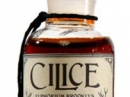 Cilice Euphorium Brooklyn for women and men Pictures