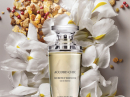 Accord Chic Yves Rocher for women Pictures
