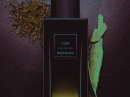 Cuir Yves Saint Laurent for women and men Pictures
