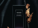 Velours Yves Saint Laurent for women and men Pictures