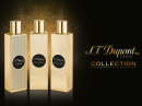 Oud & Rose S.T. Dupont for women and men Pictures