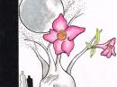 Desert Rose Dame Perfumery für Frauen Bilder
