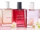 Cherry Blossom Bath and Body Works pour femme Images