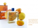 Citron Citron Miller Harris للرجال و النساء  الصور