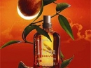 Feu d'Orange Intense Eau de Toilette L`Occitane en Provence for women and men Pictures
