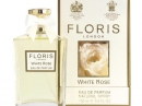 White Rose Floris de dama Imagini