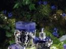 L`eau d`Minuit 2007  Fleur de Minuit Lolita Lempicka для женщин Картинки