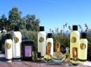 Perfect Twilight Sarah Horowitz Parfums de dama Imagini