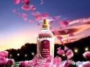 Rose Nuit de Mai L`Occitane en Provence de dama Imagini