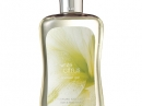 White Citrus Bath and Body Works Feminino Imagens