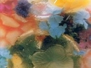 Fleur de Fleurs Nina Ricci für Frauen Bilder