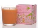 Nerola Orange Blossom Pacifica de dama Imagini